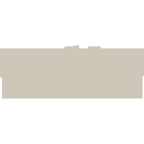 dino_market